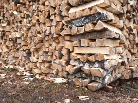 birchbark: stack of wood