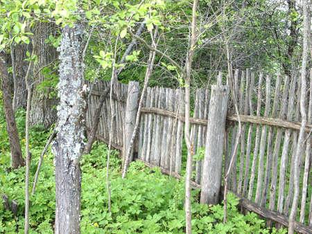 old fence photo