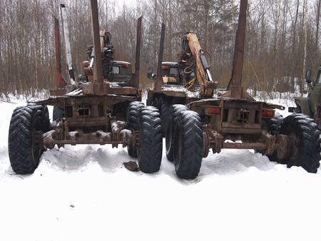 autotruck: timber trucks parked