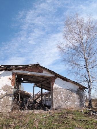 abandoned, dilapidated barnyard, spring landscape Stock Photo