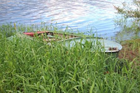 boat in the grass near the shore