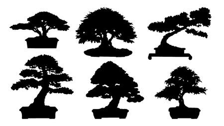 plats: black bonsai silhouette no stroke