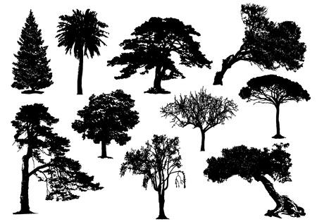 10 black tree silhouette no stroke
