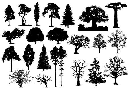 22 の黒い木のシルエットのないストローク  イラスト・ベクター素材