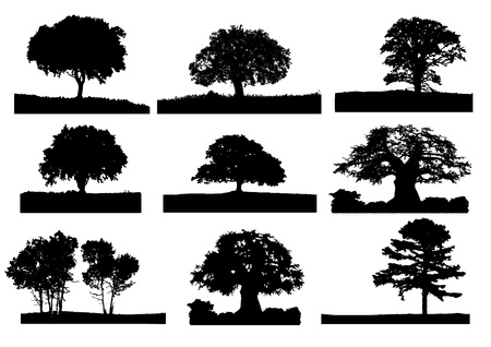 9 zwarte boom silhouet met gras Stock Illustratie