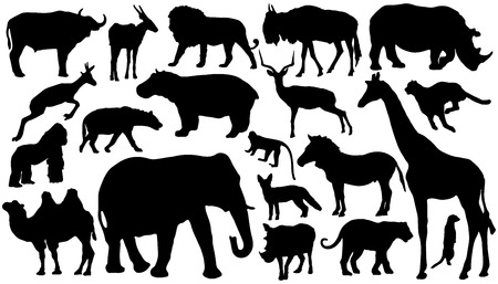 twenty african mammal silhouettes on the white background