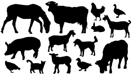 fourteen farm animals silhouettes on the white background Vector