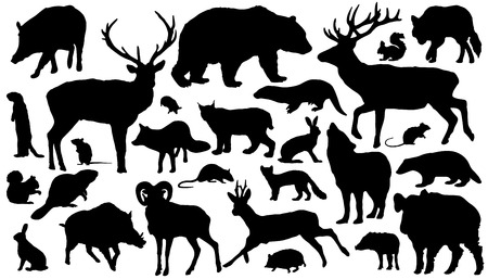 twenty-seven forest animal silhouettes on the white background Vector