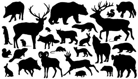 castor: veintisiete de siluetas de animales del bosque en el fondo blanco