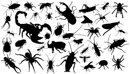 thirty-six insect silhouettes on the white background Çizim