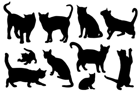 cat silhouettes on the white background