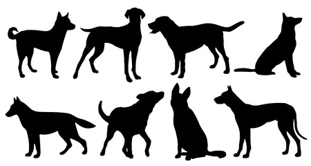 dog silhouettes on the white background