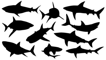 白い背景の上のサメのシルエット