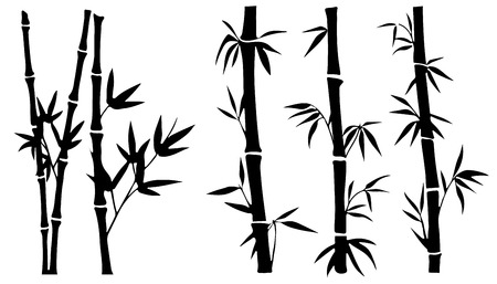 bamboo silhouettes on the white background