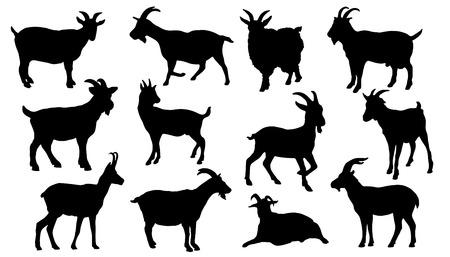 白い背景の上のヤギのシルエット