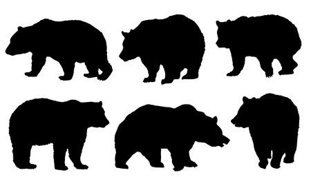 grizzly: Niedźwiedź sylwetki na białym tle Ilustracja