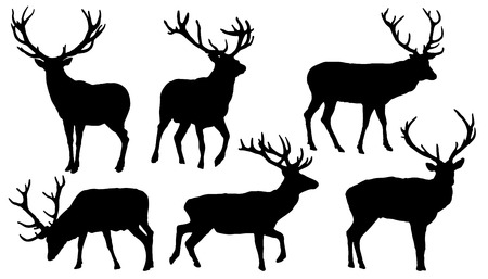 antlers silhouette: deer silhouettes on the white background Illustration