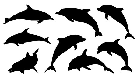 animal silhouette: dolphin silhouettes on the white background