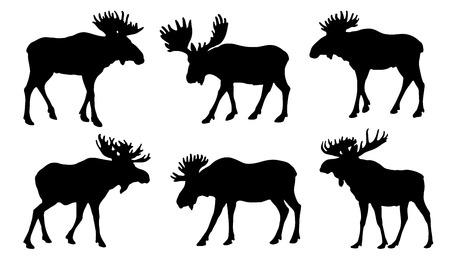 moose silhouttes on the white background Stock Illustratie