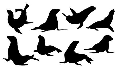 sellos: siluetas de lobos marinos en el fondo blanco
