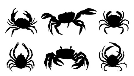 crab silhouettes on the white background