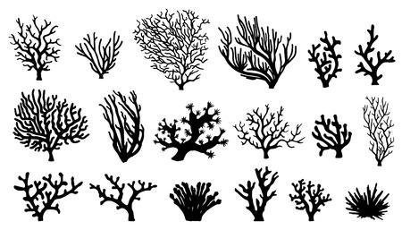 corales marinos: siluetas de coral en el fondo blanco