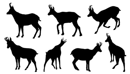 mountain goats: chamois silhouettes on the white background
