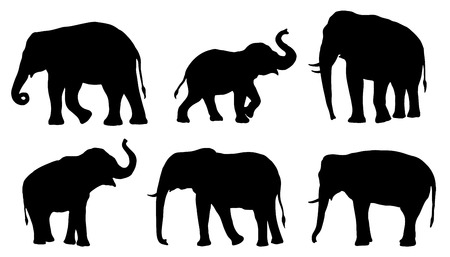 elephant silhouettes on the white background Vettoriali