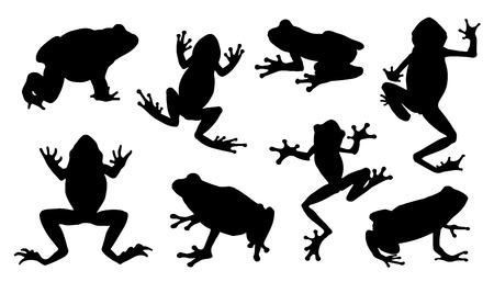 poison frog: siluetas de rana en el fondo blanco