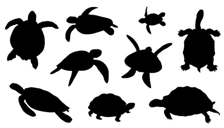 swimming in the sea: turtle silhouettes on the white background