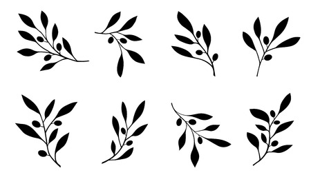 olive branch on the white background Vectores