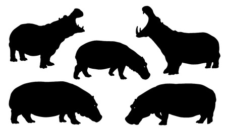 hippo silhouettes on the white background Çizim