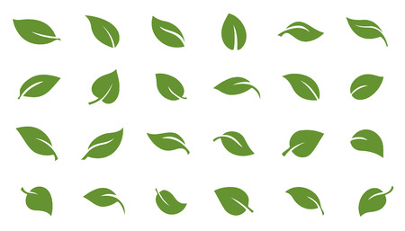 stylised: leafs green on the white background Illustration