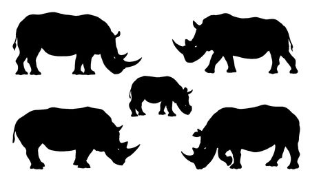 national parks: rhino silhouettes on the white background