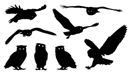 branch silhouette: owl silhouettes on the white background Illustration