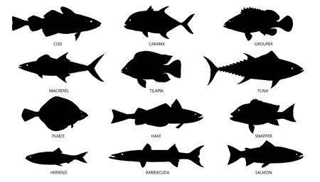 mariscos: siluetas de mariscos en el fondo blanco