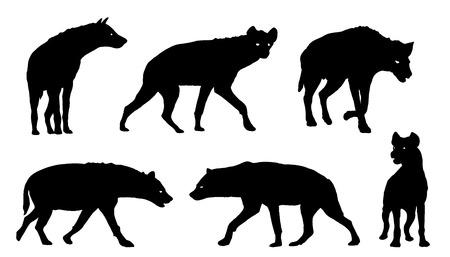 hyena silhouettes on the white background Ilustração