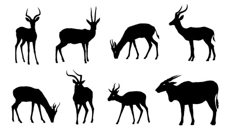 antelope silhouettes on the white background Illustration