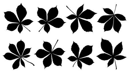 horse chestnut silhouettes on the white background Ilustração