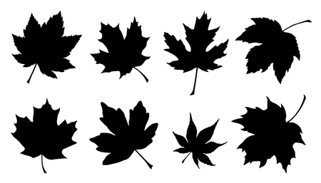 canadian flag: maple leaf silhouettes on the white background