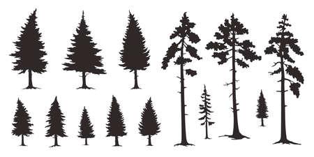 Various coconut palm on the white Vektorové ilustrace