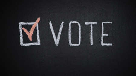 Vote word and check mark on chalkboard