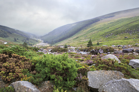 Glacial valley Glendalough in Wicklow Mountains National Park