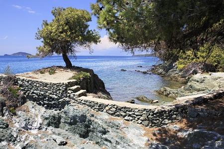 sithonia: Sporgenza di pietra in mare con un pino solitario. Penisola di Sithonia. Grecia. Archivio Fotografico