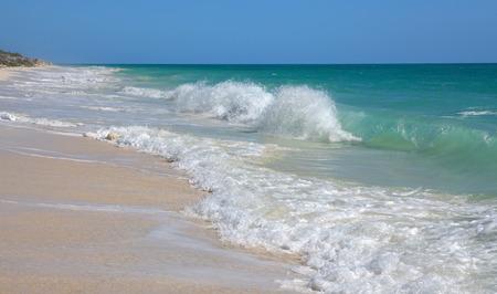 cocos: Caribbean Sea. Playa los Cocos. Cayo Largo. Cuba.
