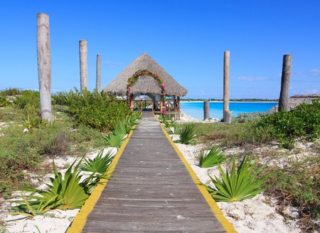 caribbean climate: Wedding gazebo on the Caribbean coast. Sol Cayo Largo. Cuba.