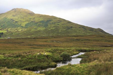 connemara: National park Connemara. County Galway in Ireland.