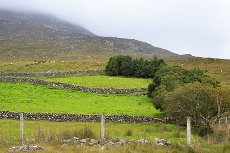 connemara: Pasture in the National park Connemara. County Galway in Ireland. Stock Photo