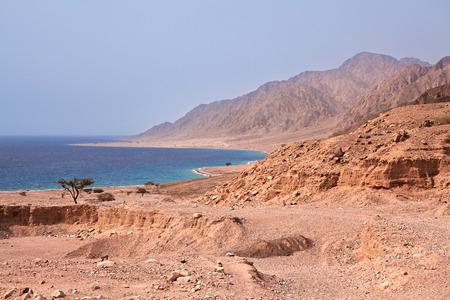 sinai: Sinai coast. Red Sea. Egypt.
