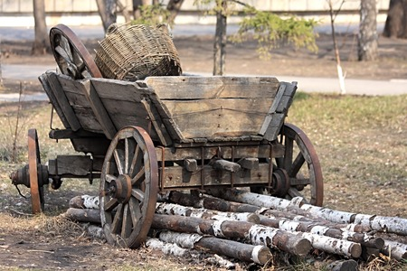 log basket: Age-old Russian cart with an utensil. Birch logs.